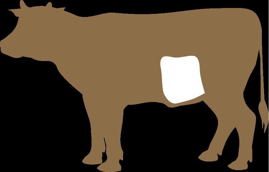 Pançeta